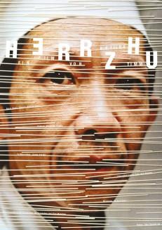 Herr Zhu