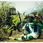UMF Wild Life 2009