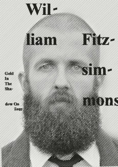 William Fitzsimmons – Gold In The Shadow Tour