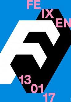 FE IX EN 13 01 17